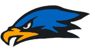 Hawk Head logo